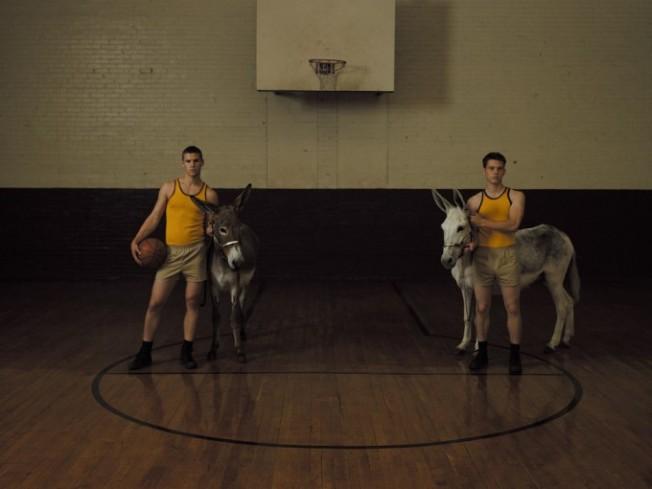 DonkeyBasketball-680x510